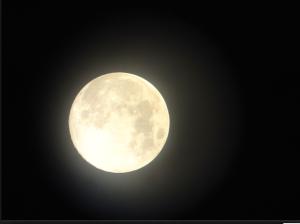 Screen shot 2014-03-20 at 5.26.56 PM