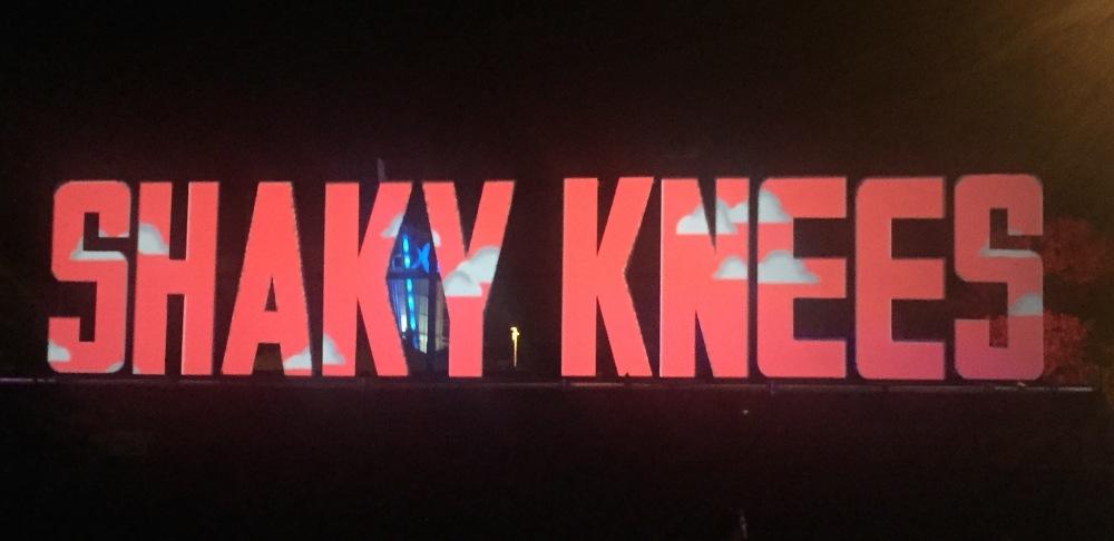 Shaky Knees Sign-IMG_9283